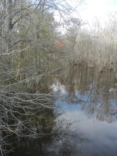 Brier Creek at Brannens Bridge